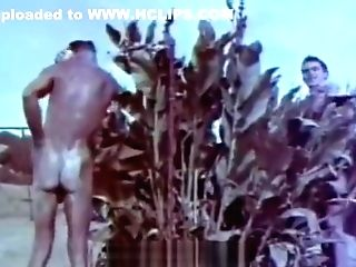 Outdoor Nudists Lovin' Naked Lifestyle (1950s Antique)